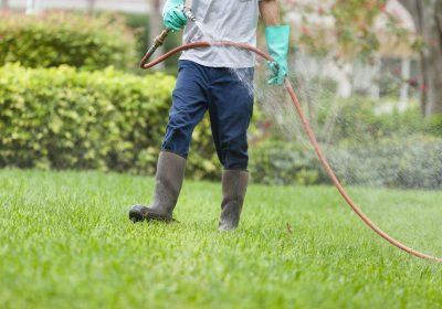 pesticide spray on lawn